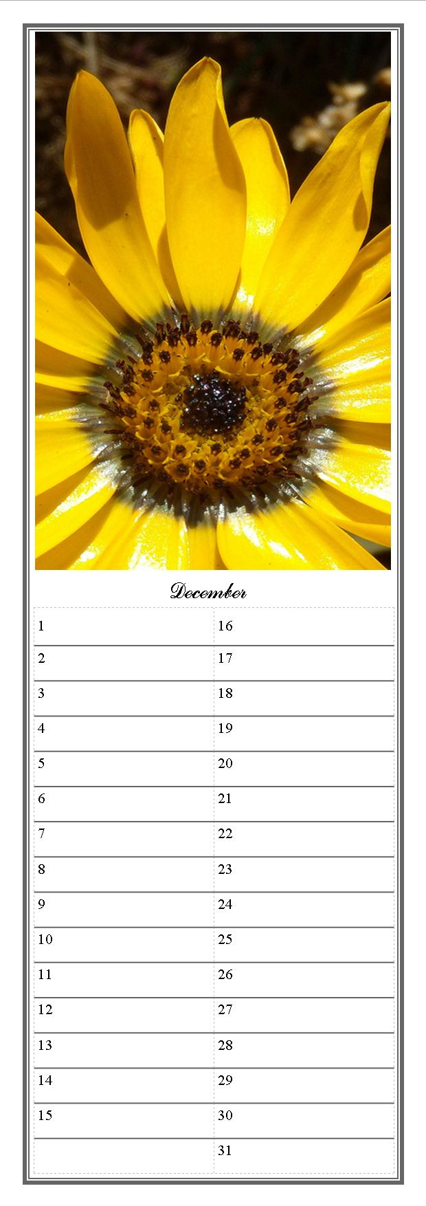 Fun Observances Dates To Remember | just b.CAUSE